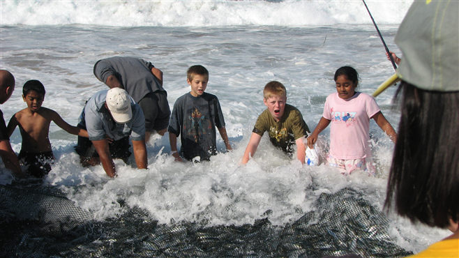 Kids helping Cape fishermen haul in their huge sardine catch