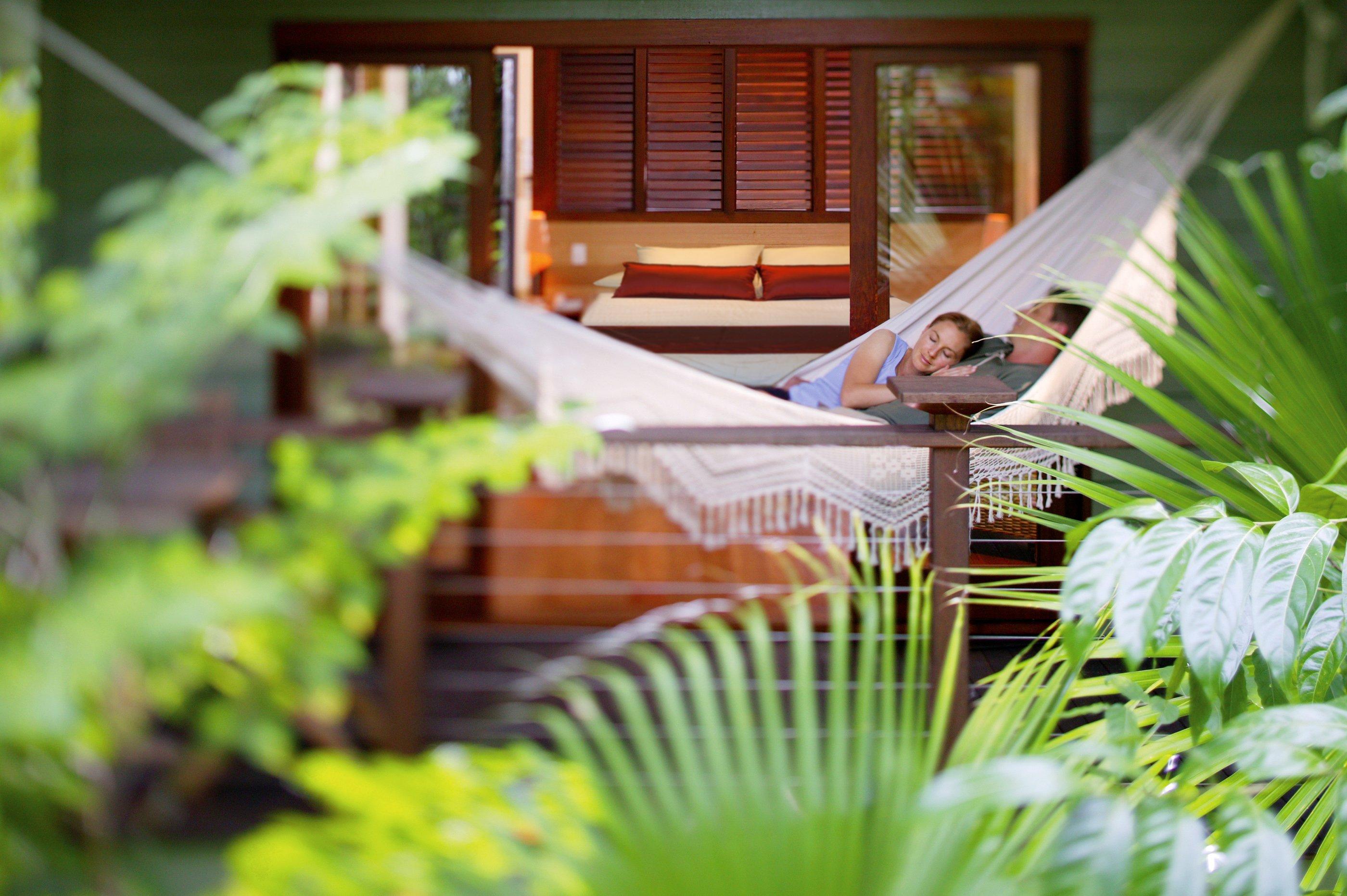 Sleep amongst the rainforest canopy in the Silky Oaks Tree House room
