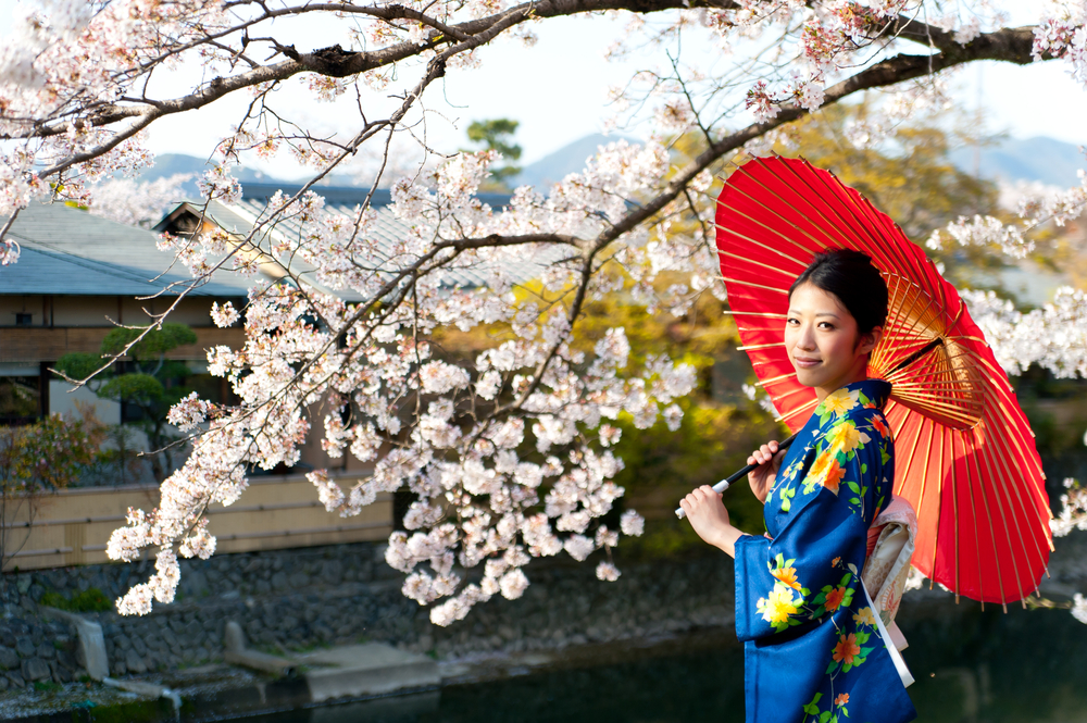 Woman and Cherry Blossoms, Japan