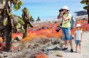 On top of incredible wildlife, the plantlife of the Galapagos is equally unique