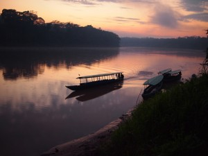 There are many ways to explore the mighty Amazon