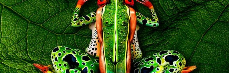 Johannes-Stoetter-body-Frog