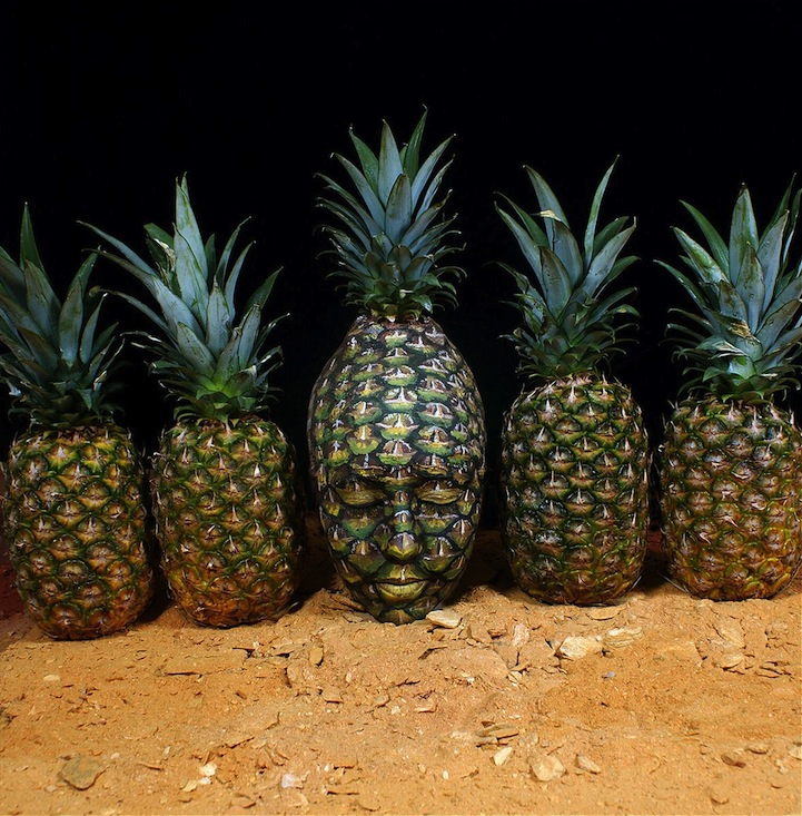 ShockBlast-Johannes-Stoetter pineapple