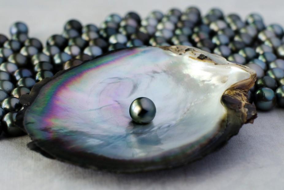 Black-pearl-cooks-tahiti-island-156805304