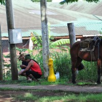 Here on Rapa Nui, the fire hydrant is a great place to tie your horse up too!