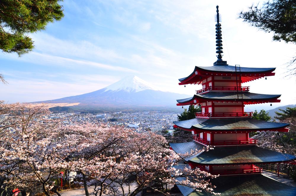 Japan-Asia-Cherry-Blossom_110040665