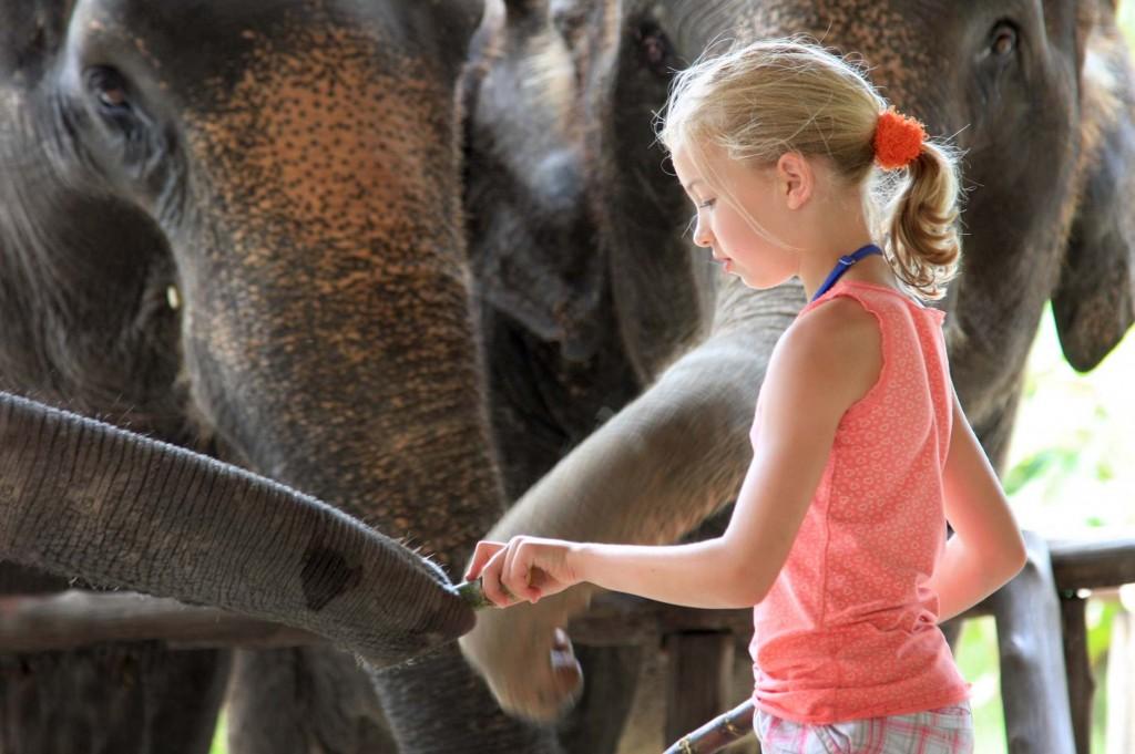 Elephant Hills Thailand ASIA1