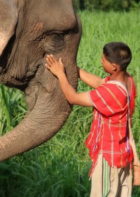 Elephant Hills Thailand ASIA7
