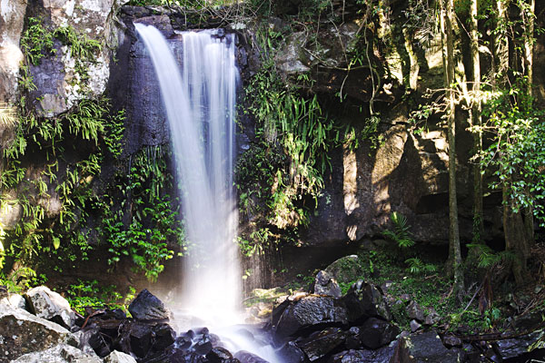Curtis Falls, located in Mount Tamborine