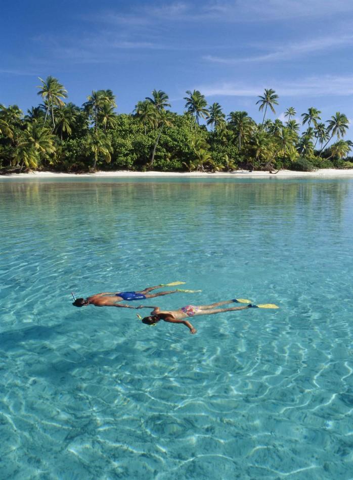 Life underwater Cook Islands