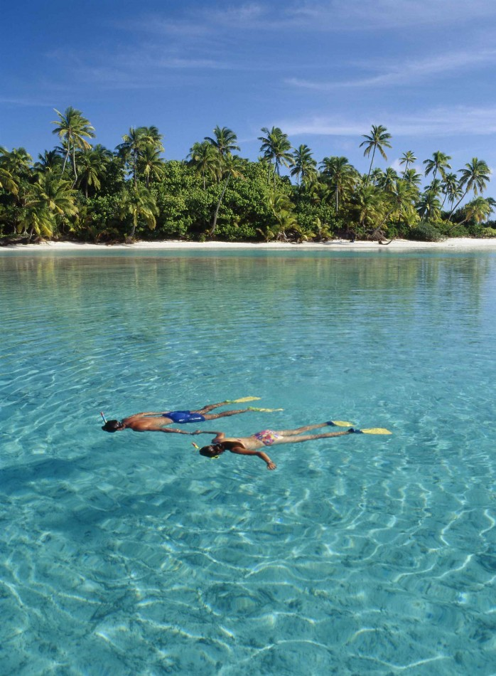Life underwater Cook Islands
