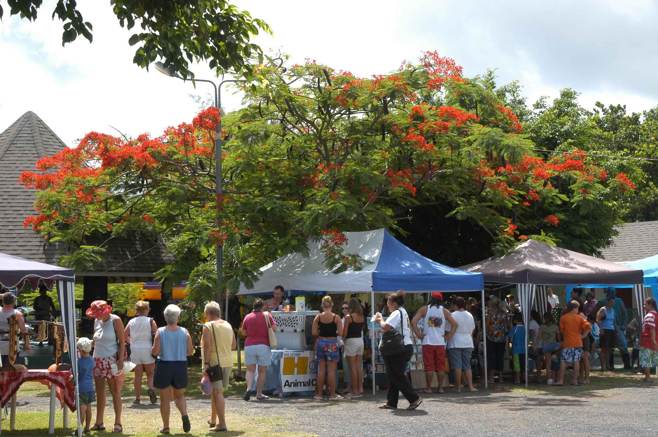 Saturday Market Cook Islands