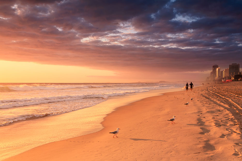 Surfers walk along the Gold Coast beach at sunrise, Queensland, Australia
