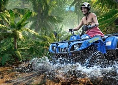 coconut-tours