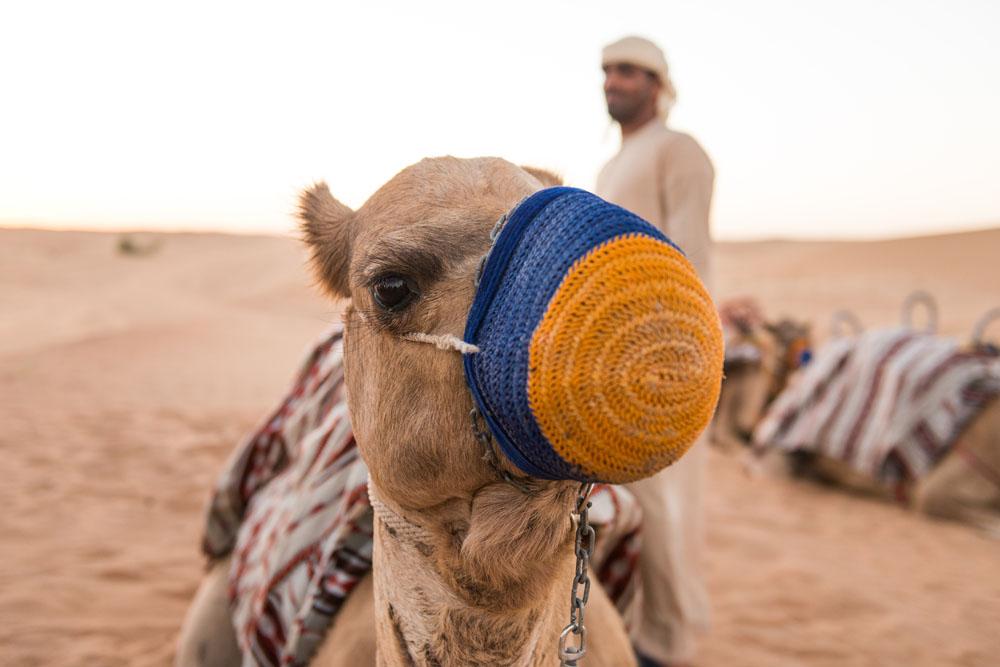 FlashParker Dubai_1476