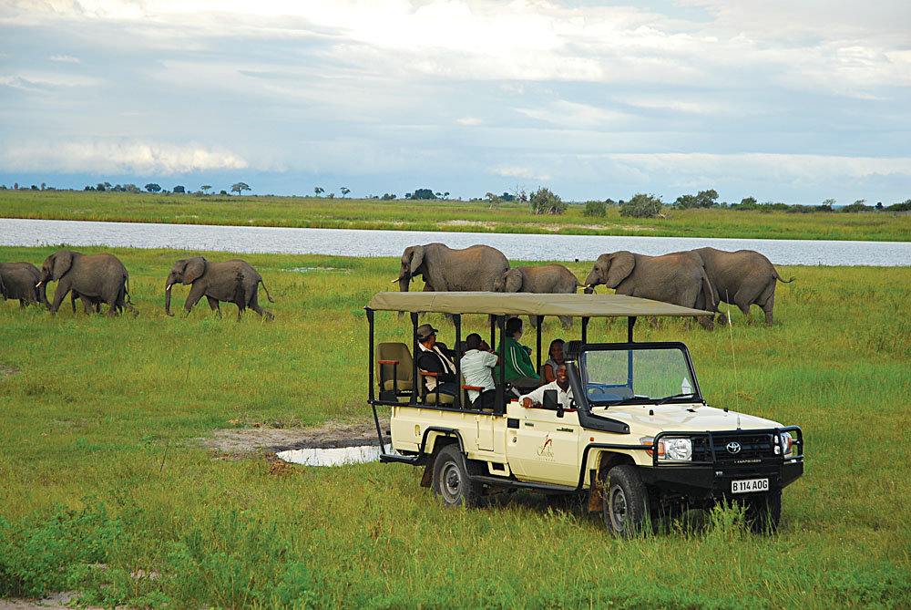 Chobe Game Sightings Elephants and Jeep, Botswana