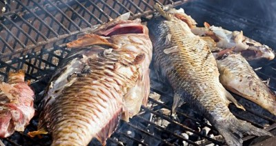 Fresh fish on the barbecue