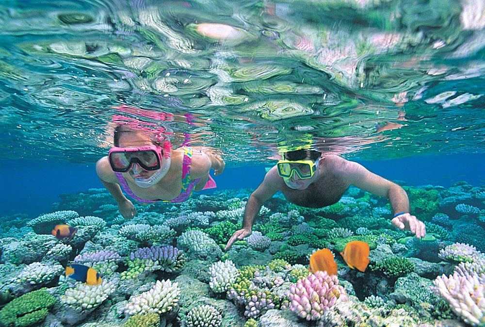 Snorkeling at Great Barrier Reef, Australia