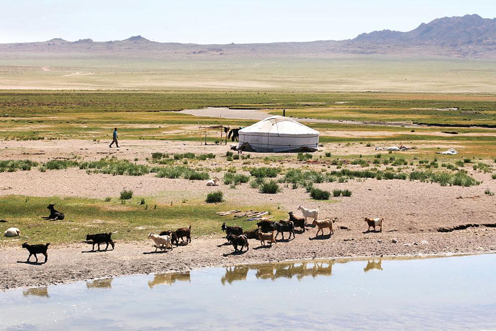 Traditional Mongolian landscape