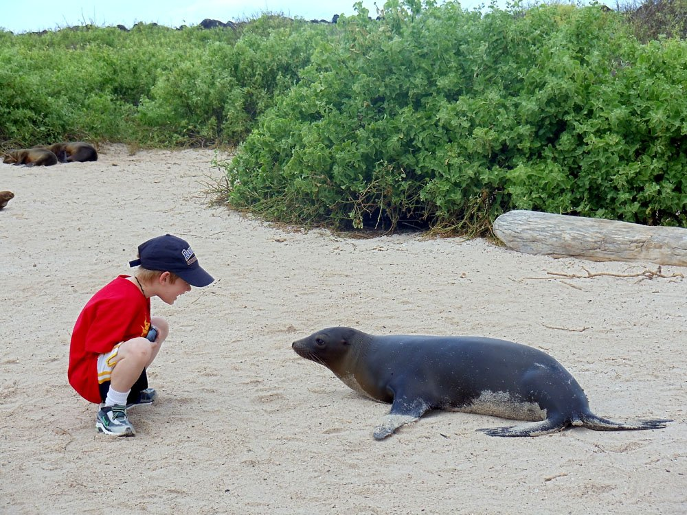 Boy and Galapagos Seal, Ecuador