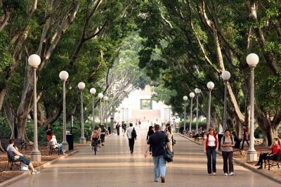 Hyde Park pathway