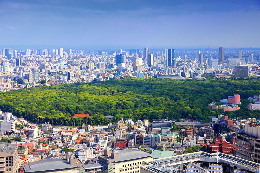 Aerial view of Shinjuku and Shibuya Districts with Yoyogi Park, Tokyo, Japan