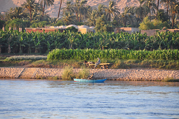 Life on the Nile