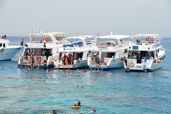 Snorkelling excursion at Sharm El Sheikh