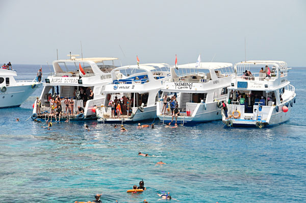 Snorkelling excursion at Sharm El Sheikh