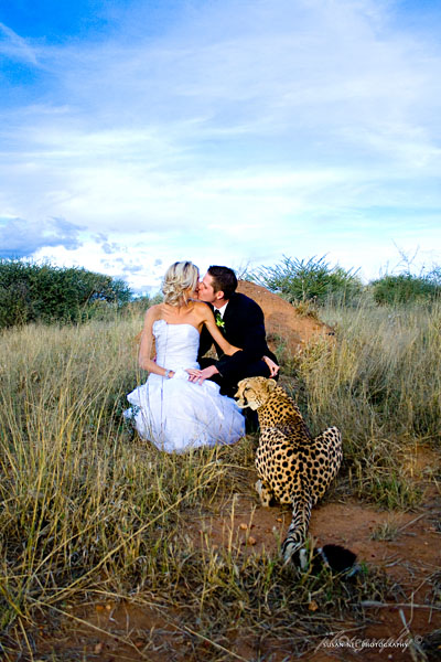 Conservation wedding | Photo courtesy of Susan Nel Photography