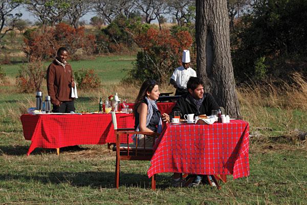 Bush Breakfast at Serengeti Bushtops