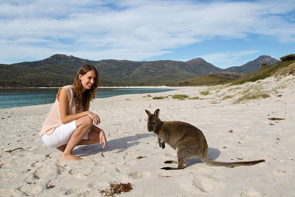 Encounter with a Kangaroo at Wineglass Bay, Tasmania, Australia