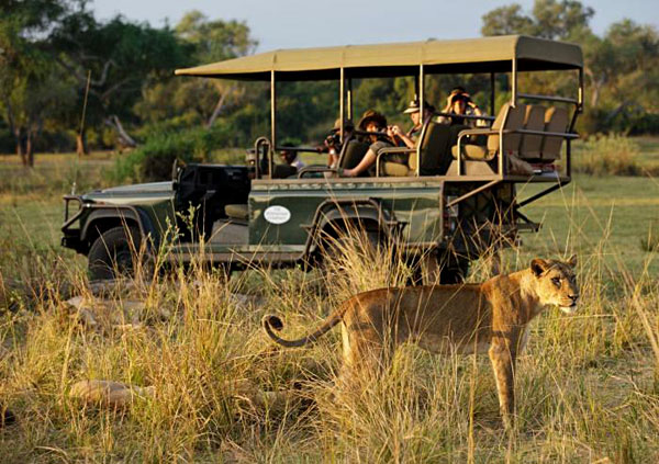 Mfuwe Lodge game drive | Photo credit: Tony Heald