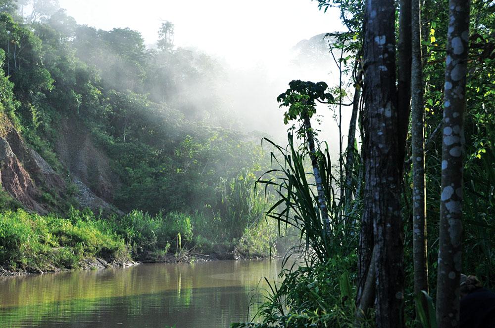 Peruvian Amazon, Peru