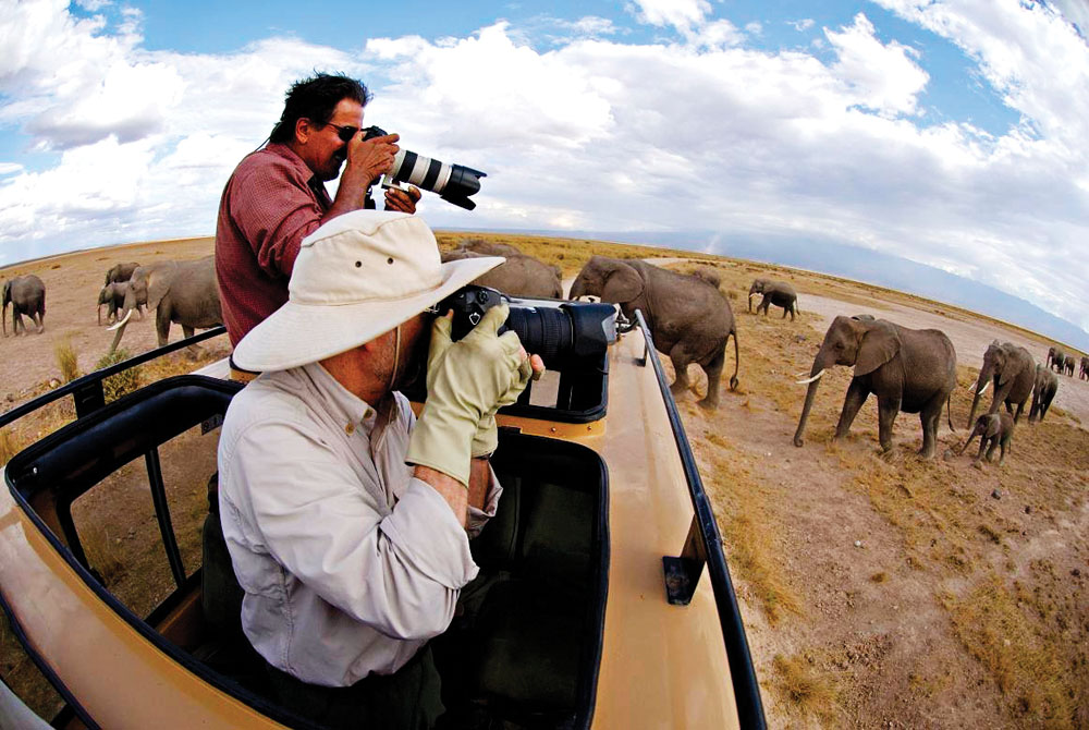 Photographing Elephants in Africa