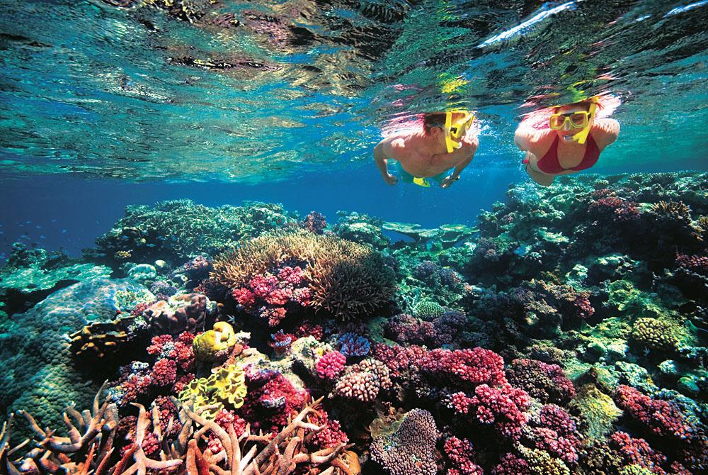 Snorkelling at Great Barrier Reef, Australia