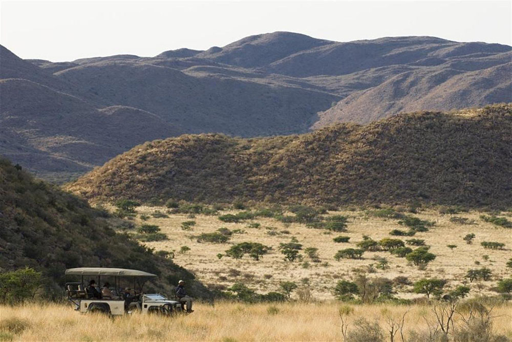 Tswalu's private vehicle safari
