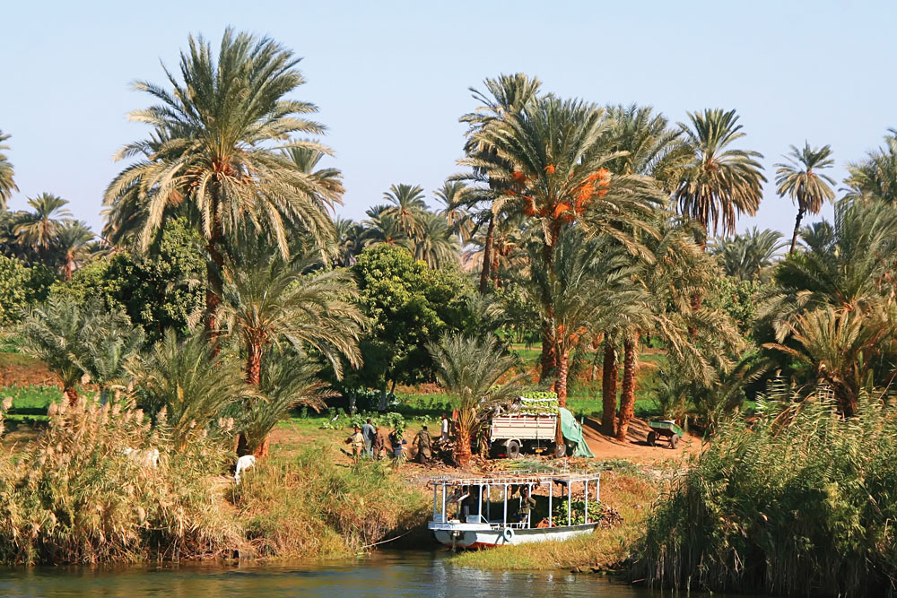 Life Along the Nile, Egypt