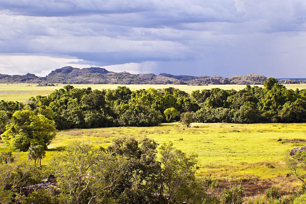 Kakadu National Park During Wet Season, Northern Territory, Australia