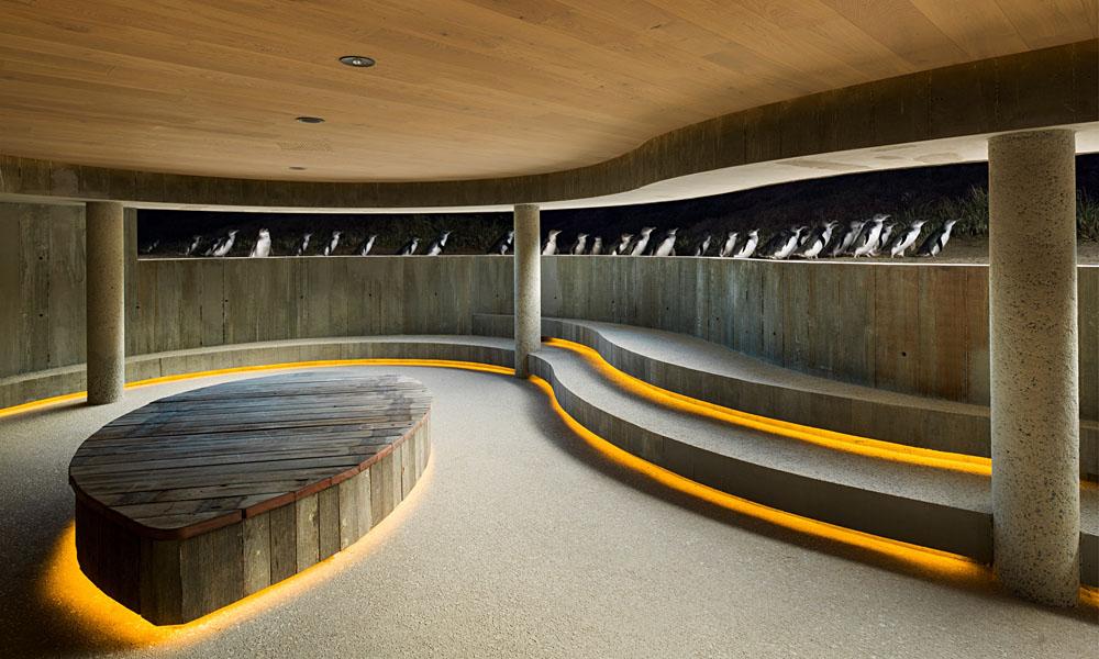 Phillip Island Penguin Parade Underground Viewing Interior, Victoria, Australia