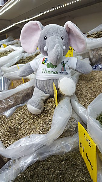 Thandi in the Spice Market, Israel