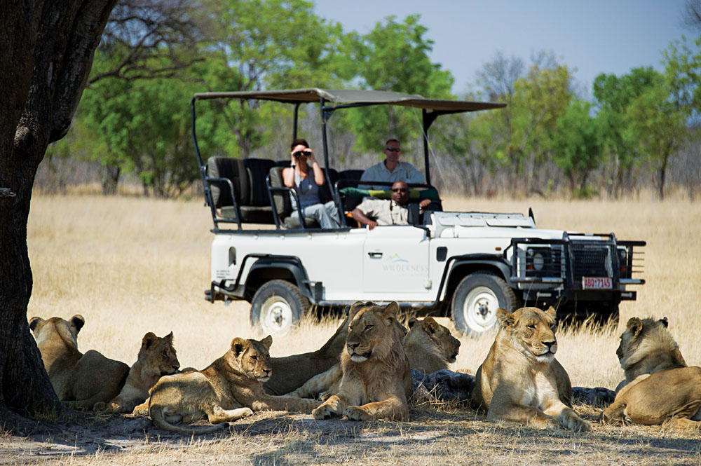 Game Viewing in Hwange National Park, Zimbabwe - photo credit Dana Allen