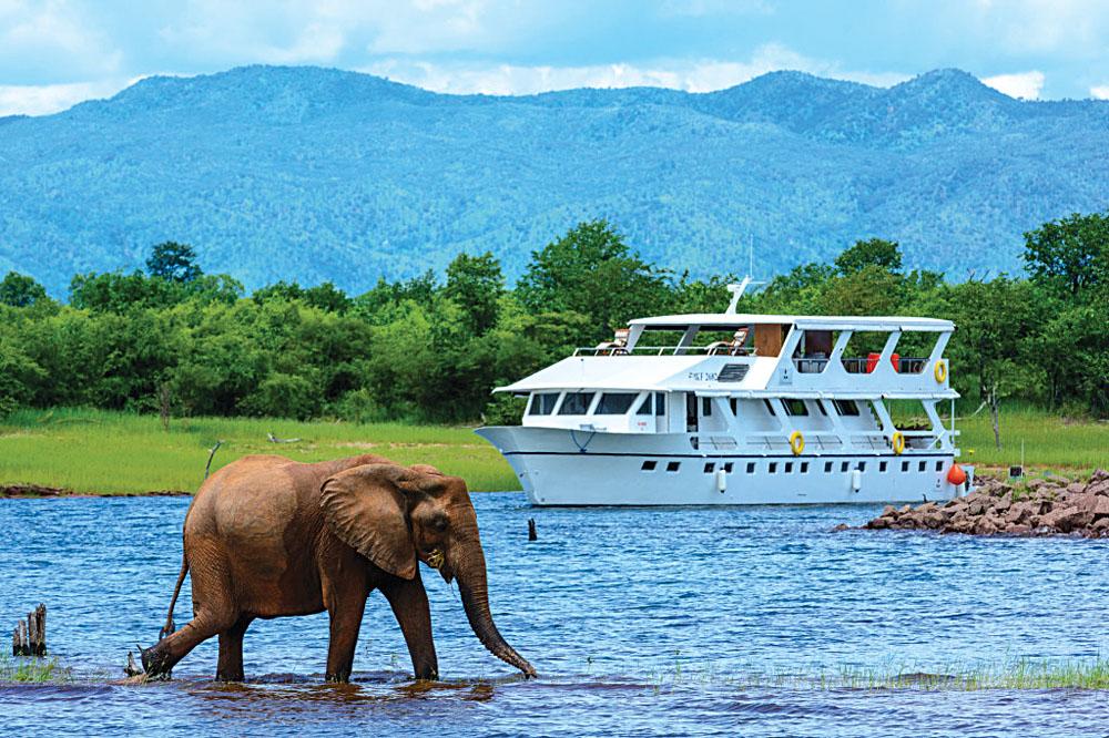 Matusadona Cruise Boat and Elephant, Zimbabwe