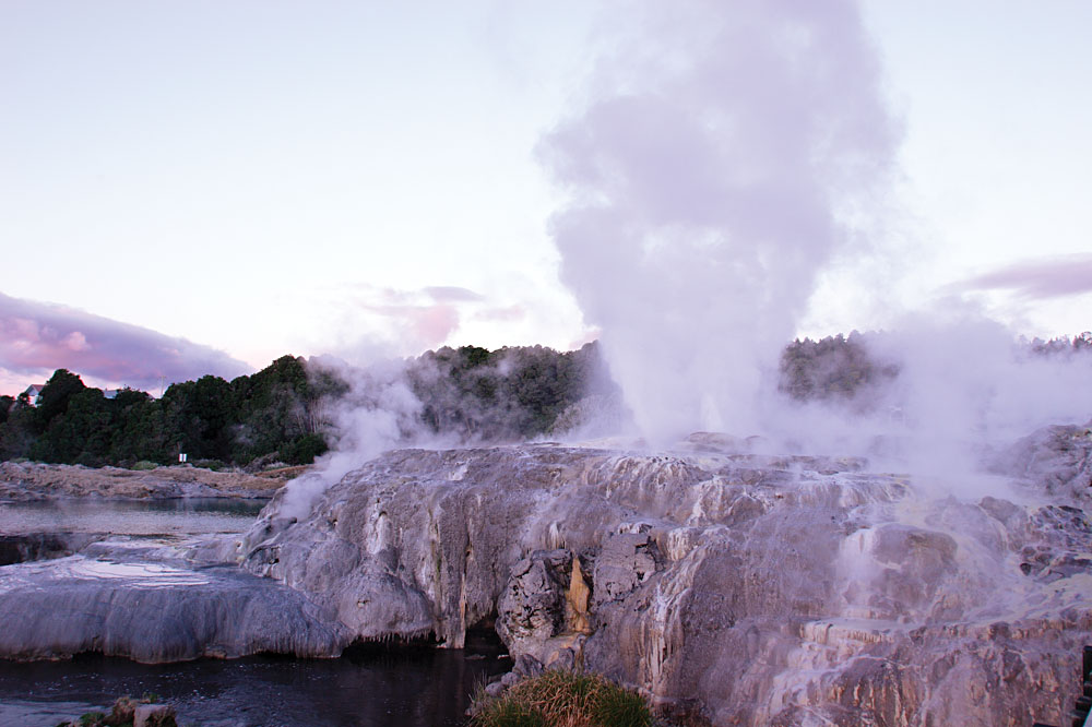 Pohutu Geyser, Te Puia, Rotorua, North Island, New Zealand