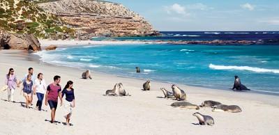 Seal Bay Conservation Park, Kangaroo Island, Australia