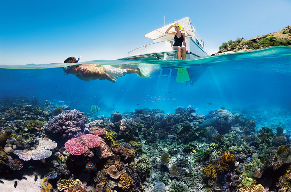 Reef Snorkelling, Great Barrier Reef, Australia