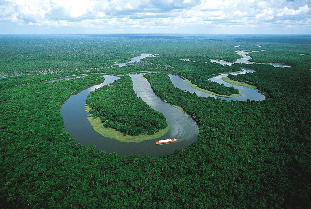 Amazon River and Jungle, South America