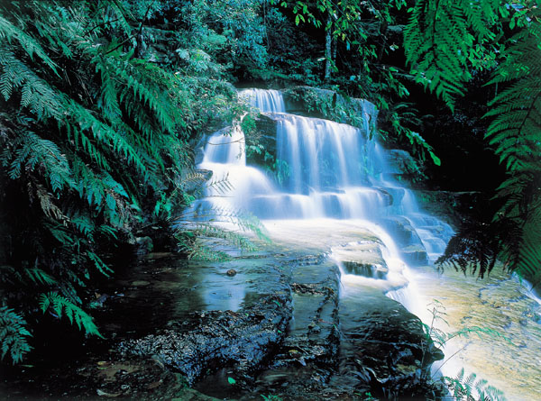 Blue Mountains - Leura Cascading Waterfalls, New South Wales, Australia