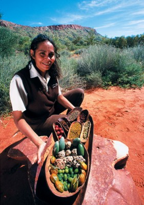 Bush tucker display at Alice Springs Desert Park, Northern Territory, Australia