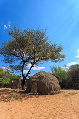 Traditional San Bushmen Hut in Kalahari, Botswana